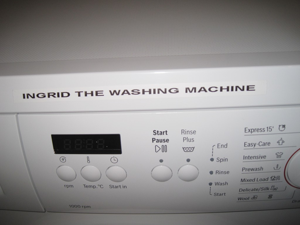 Ingrid the Washing Machine